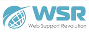 Web Support Revolution